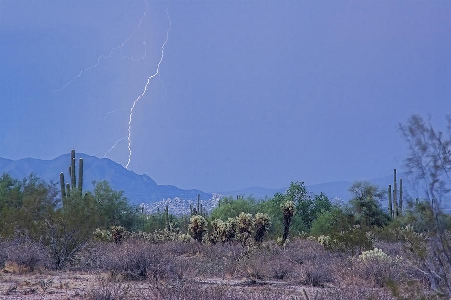 Lightning Photograph - Arizona Desert  by James BO  Insogna