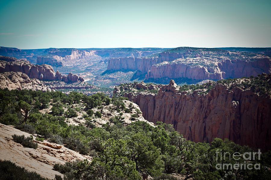 Arizona Photograph - Arizona Desert Landscape by Ryan Kelly