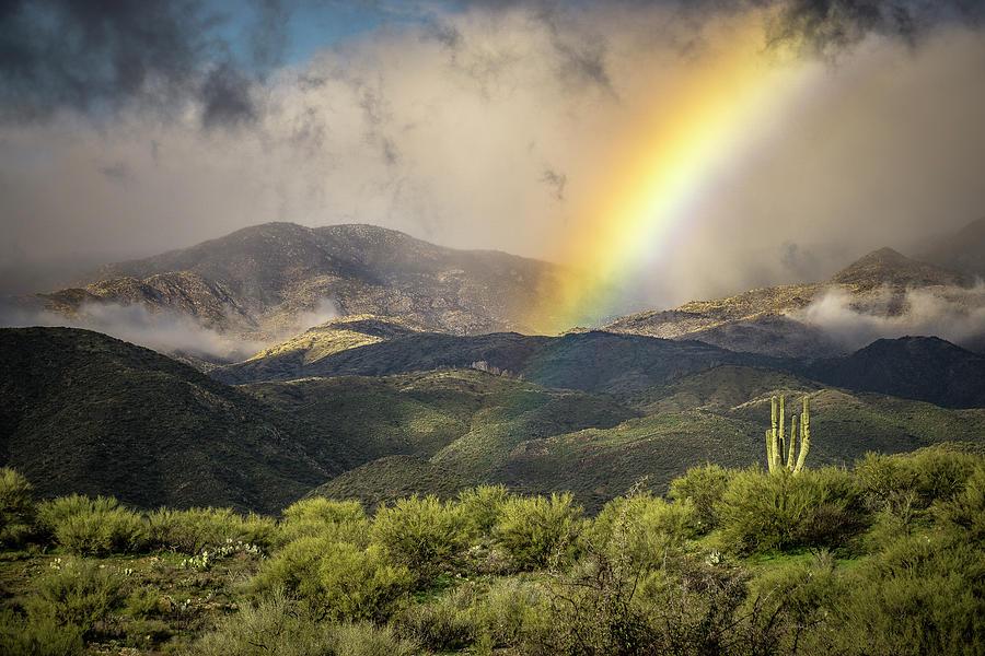 Arizona Rainbow by Whit Richardson