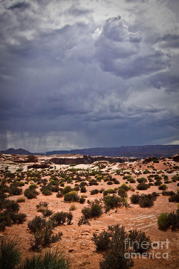 Arizona Photograph - Arizona Rainy Desert Landscape by Ryan Kelly