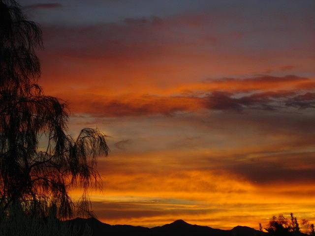Sunset Photograph - Arizona Sunset by Lessandra Grimley