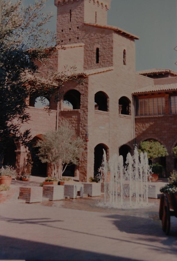 Arizona Photograph - Arizona Water by Rob Hans