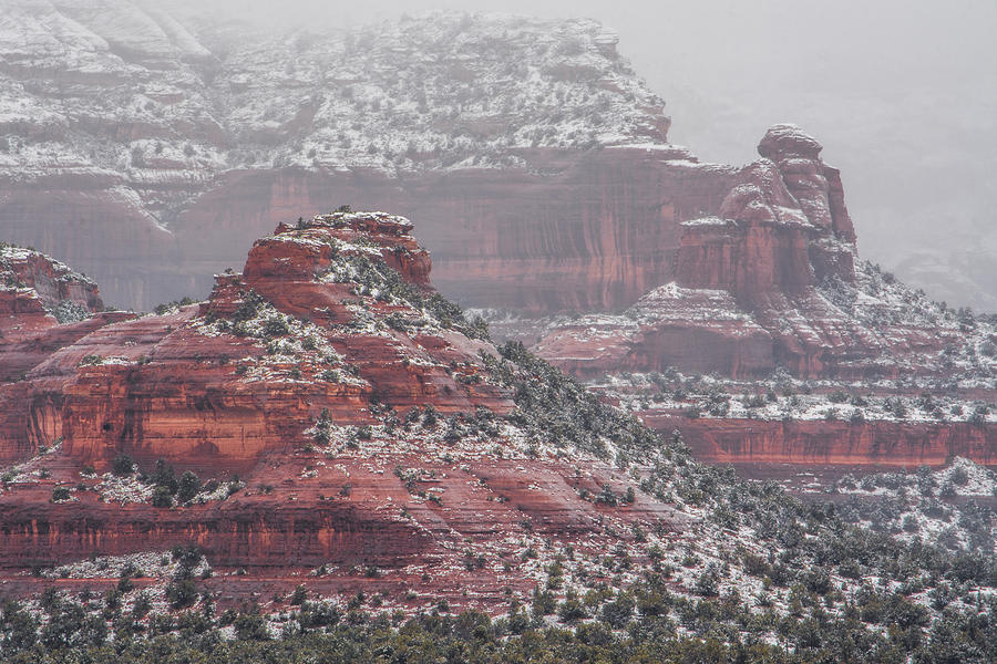 Arizona Winter Photograph