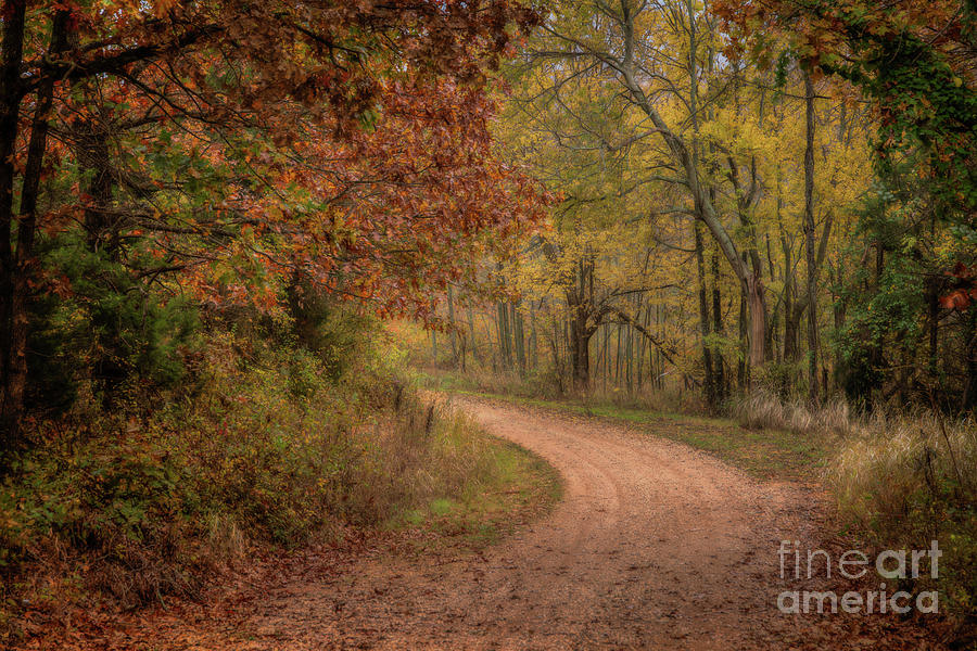 Arkansas Backroads by Larry McMahon