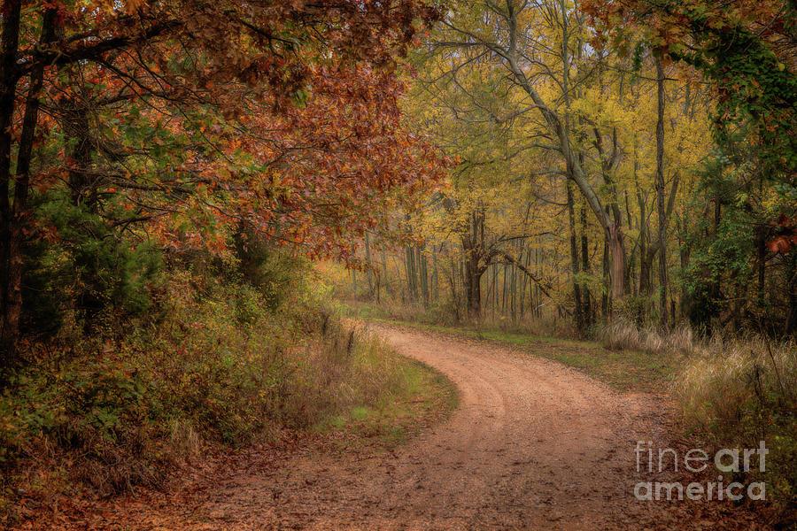 Arkansas Backroads by Larry McMahon