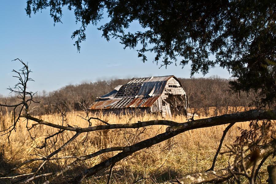 Arkansas Photograph - Arkansas Barn 1 by Douglas Barnett