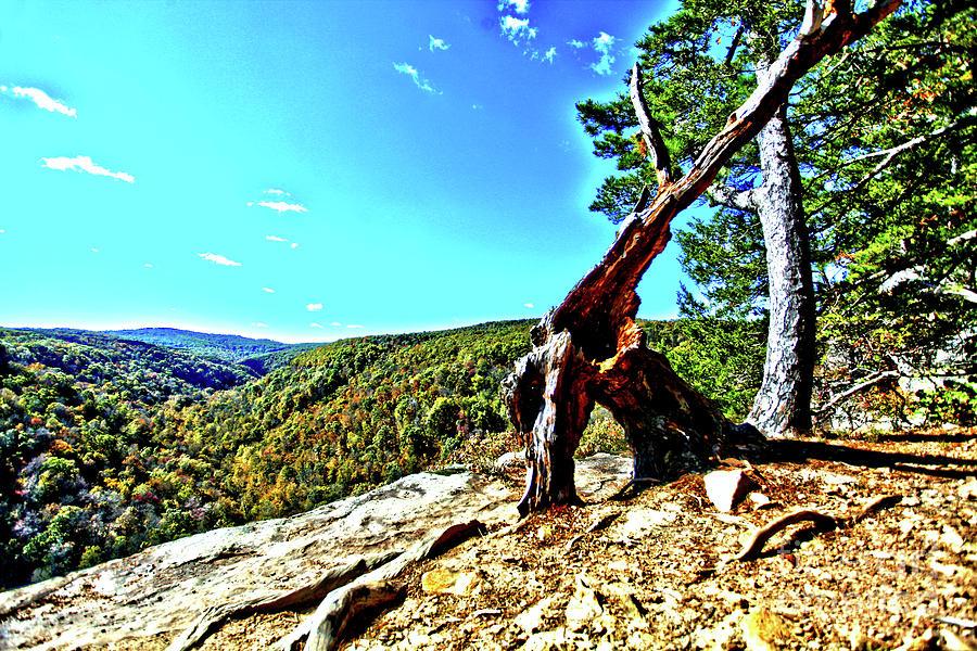 Arkansas Photograph - Arkansas by Kevin Kuchler