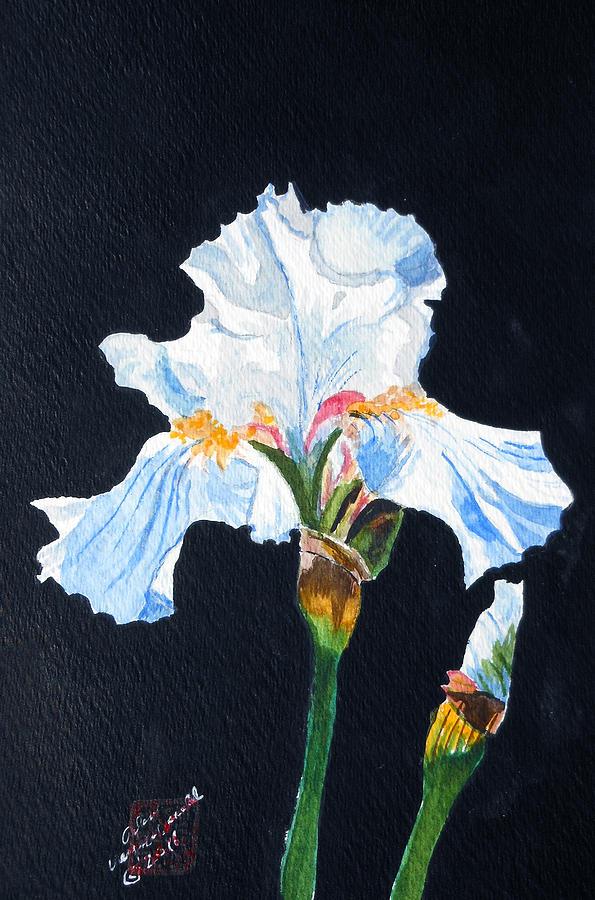 Iris Painting - Arlenes Iris by Arlene  Wright-Correll