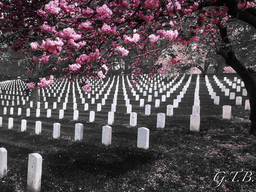 Arlington Photograph - Arlington National Cemetery by Garrett Blum