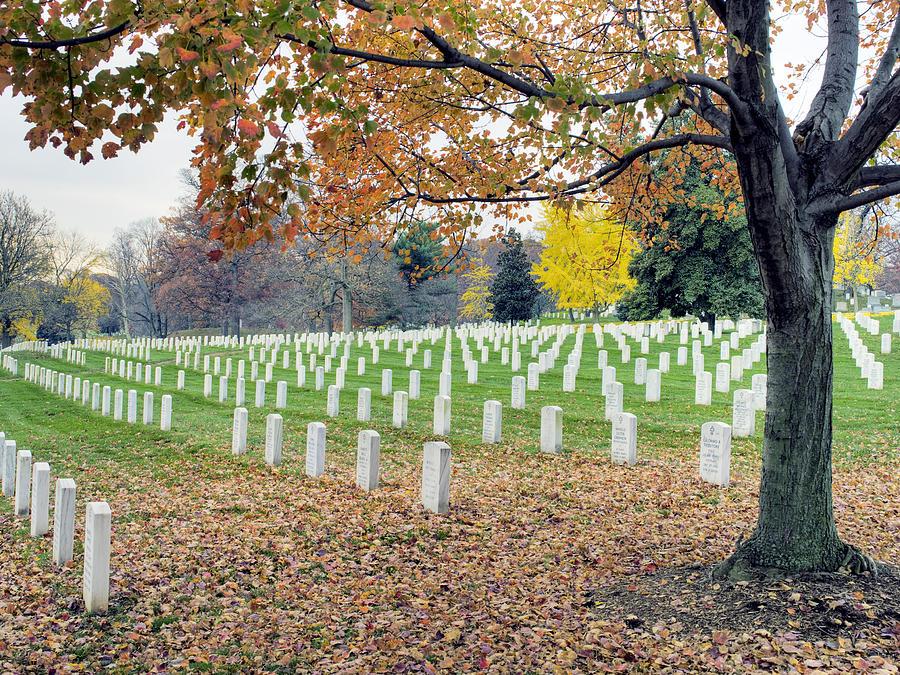 Arlington Photograph - Arlington National Cemetery Virginia by Brendan Reals