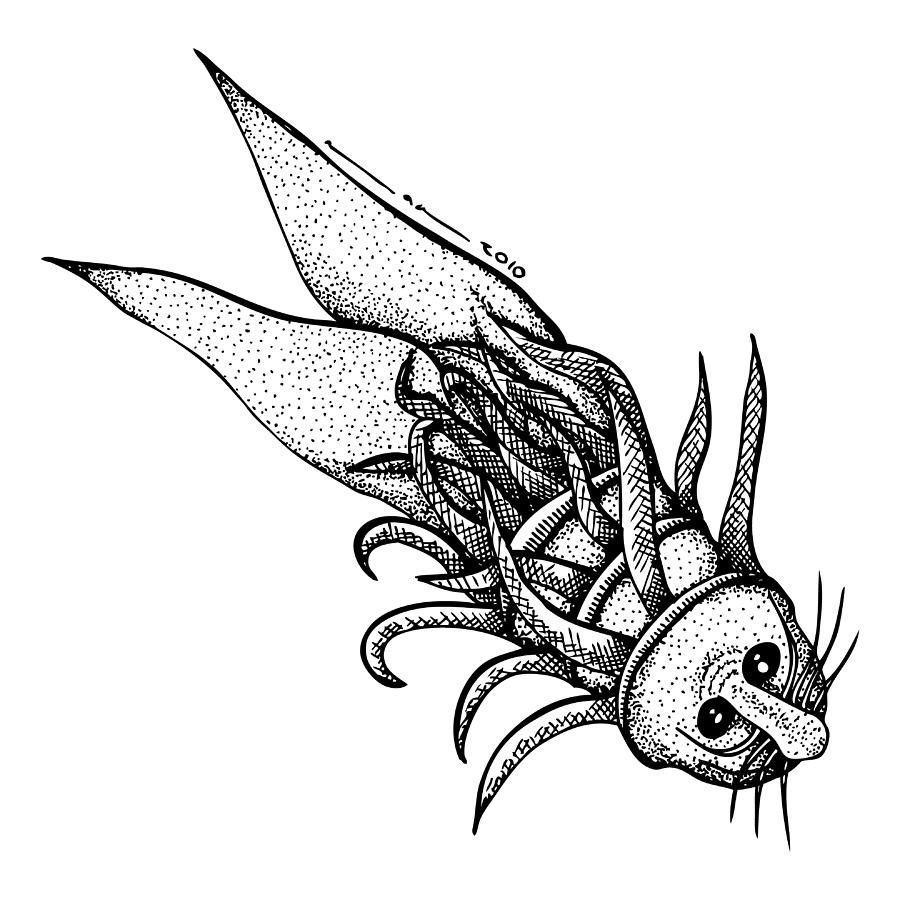 Sketch Drawing - Arm Fish by Karl Addison