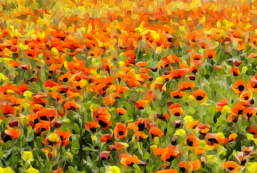 Armenia Photograph - Armenia Flowers In Spring by Dennis Cox