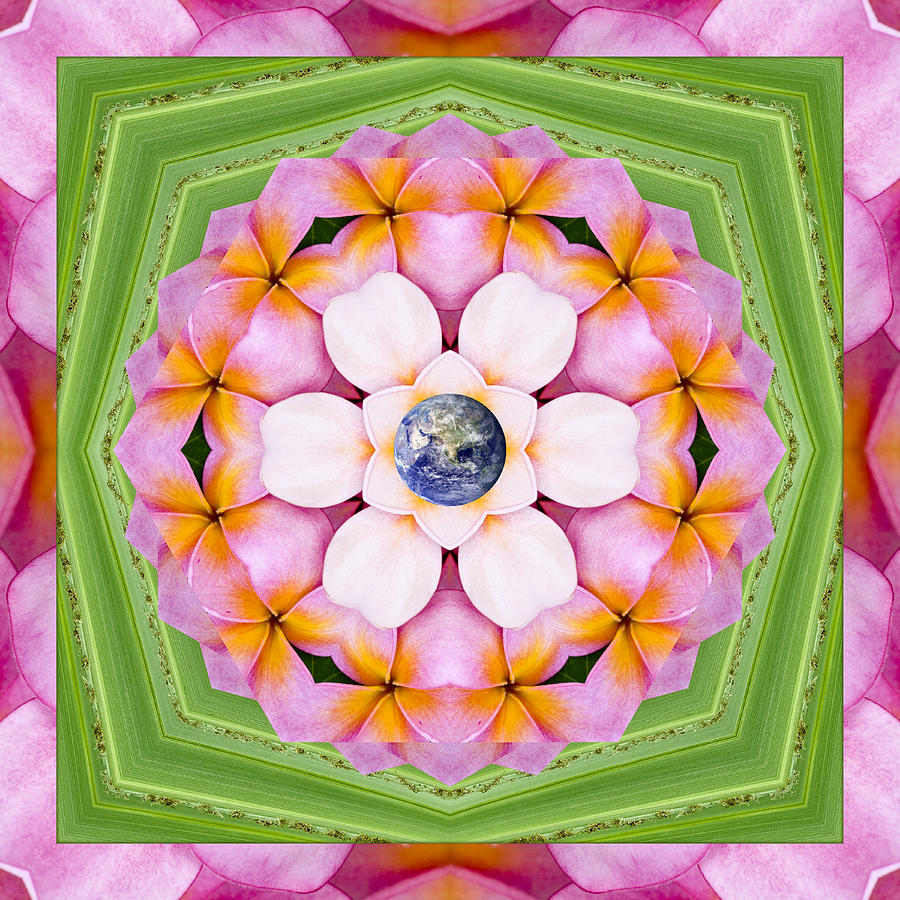 Mandalas Photograph - Aroma Rouge by Bell And Todd