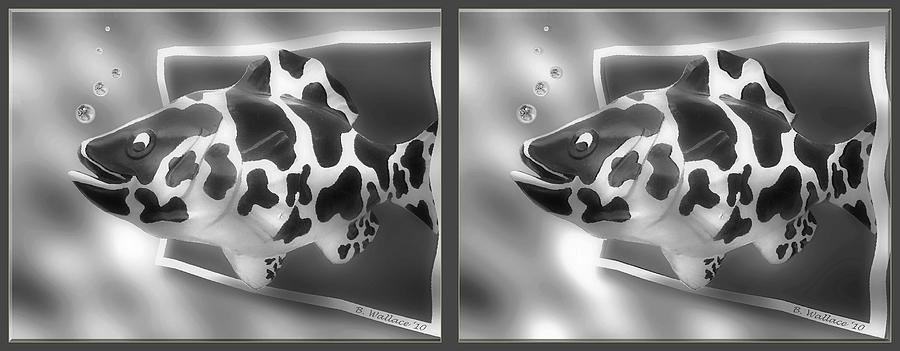 3d Photograph - Art Fish - Gently Cross Your Eyes And Focus On The Middle Image That Appears by Brian Wallace