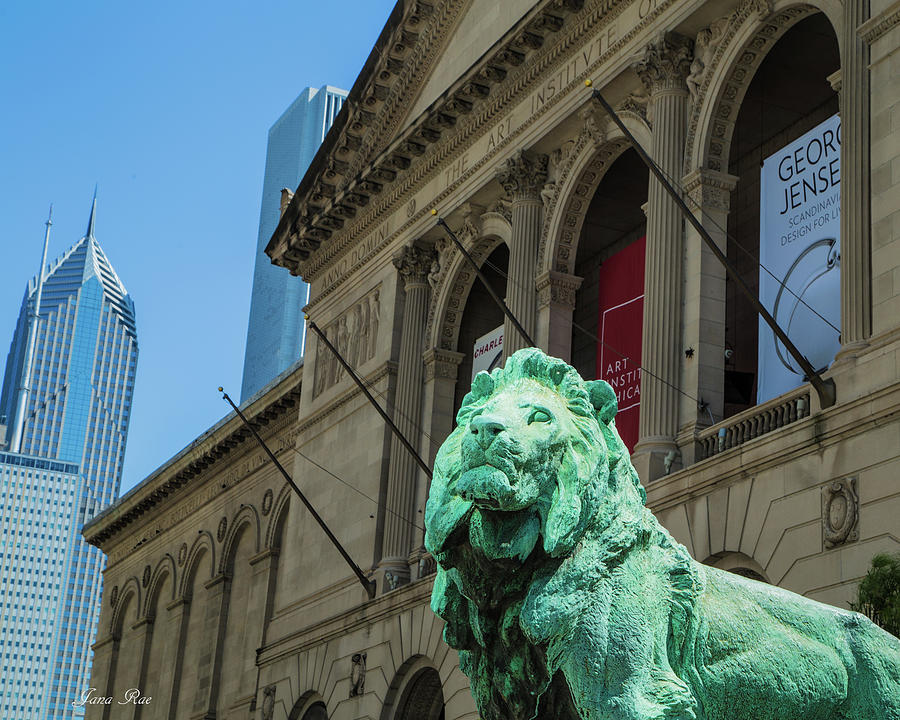 Art Institute of Chicago #2 by Jana Rosenkranz