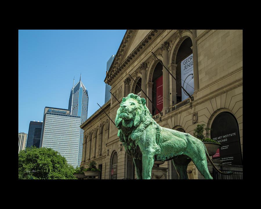 Art Institute of Chicago by Jana Rosenkranz