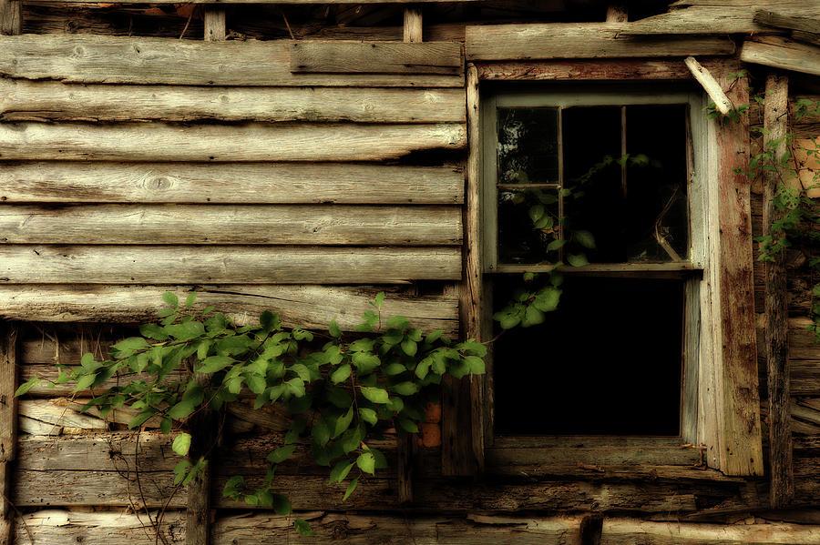 Still Life Photograph - Art Of Abandonment by Rick Martin