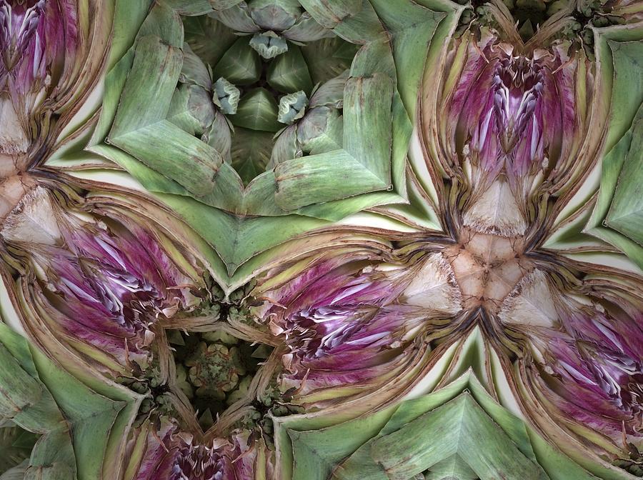 Nature Photograph - Artichoke Heart by Sylvan Adams