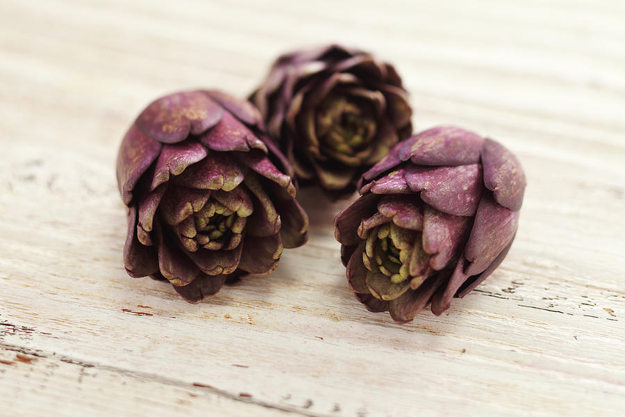 Horizontal Photograph - Artichokes by James And James