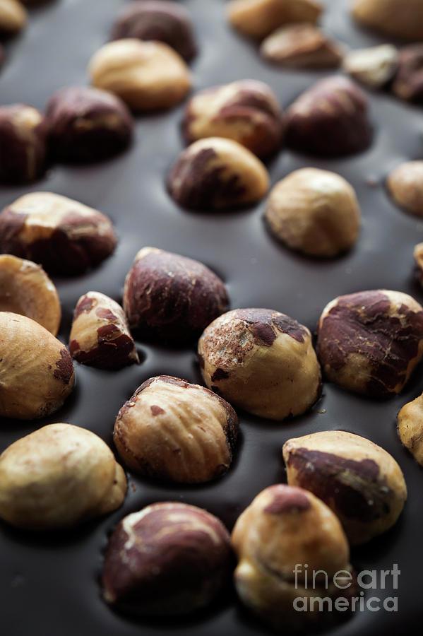 Chocolate Photograph - Artisanal Chocolate With Hazelnuts by Elena Elisseeva