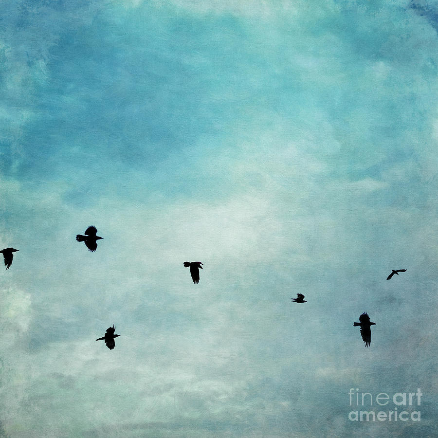 Clouds Photograph - As The Ravens Fly by Priska Wettstein