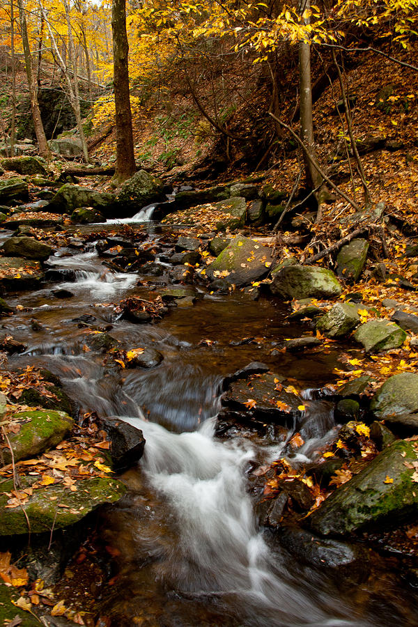 Autumn Photograph - As The Water Runs by Karol Livote