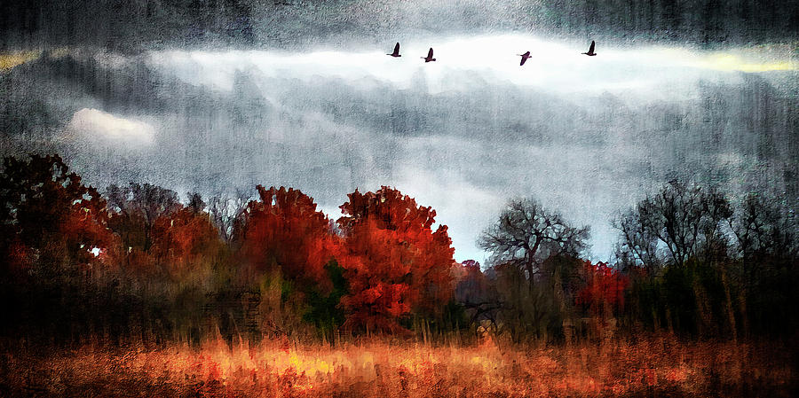 Fall Photograph - Art Series #1 by Garett Gabriel