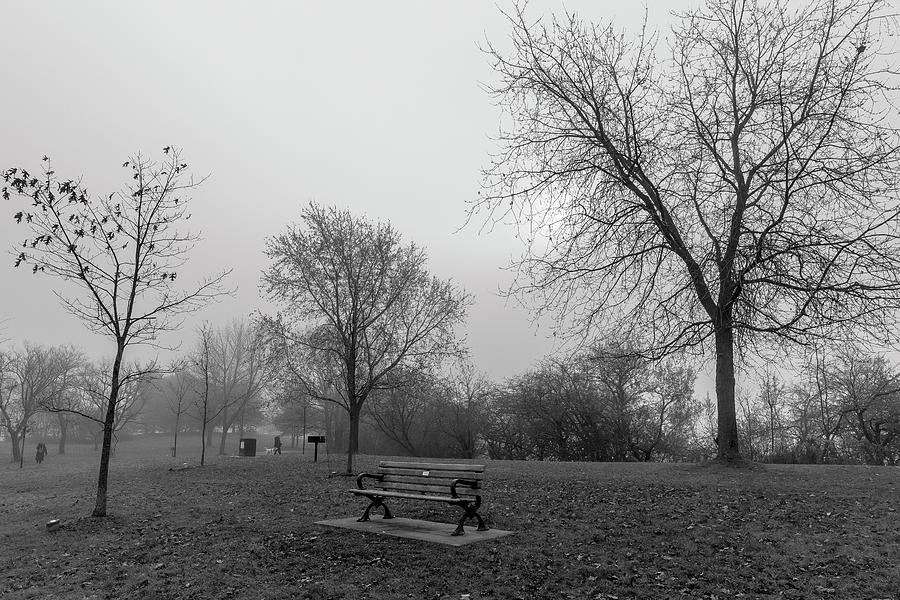 Ashbridge's Bay Park in Fog by Rick Shea