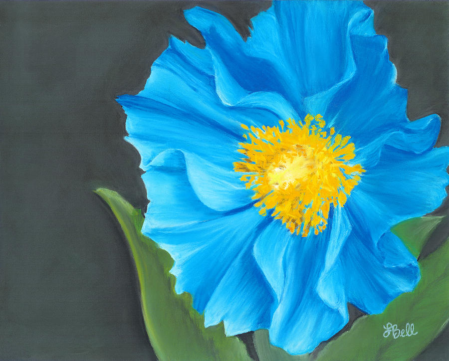 Poppy Painting - Asian Blue by Laura Bell