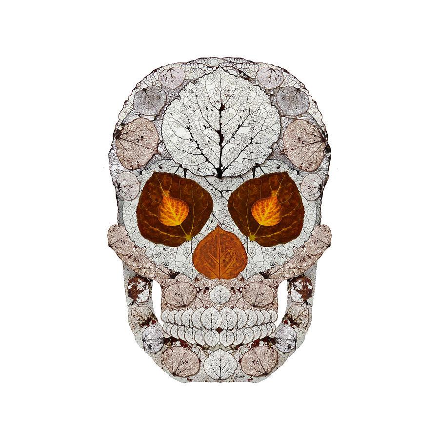 Aspen Leaf Skull 11 Digital Art