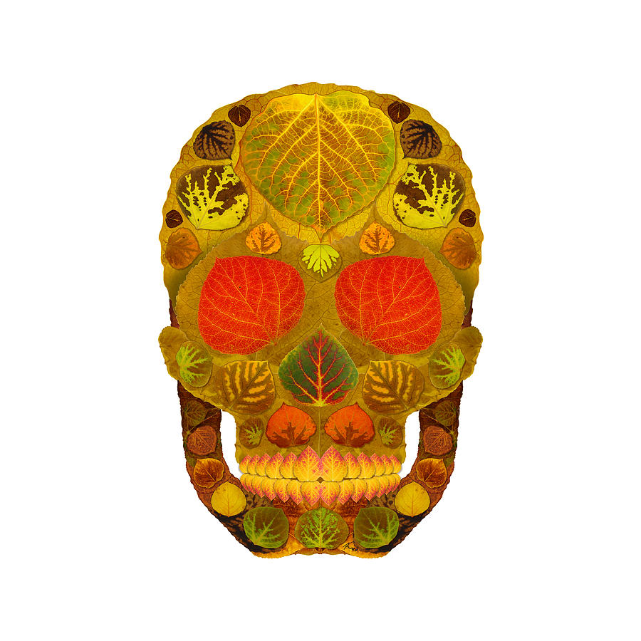 Skull Digital Art - Aspen Leaf Skull 12 by Agustin Goba