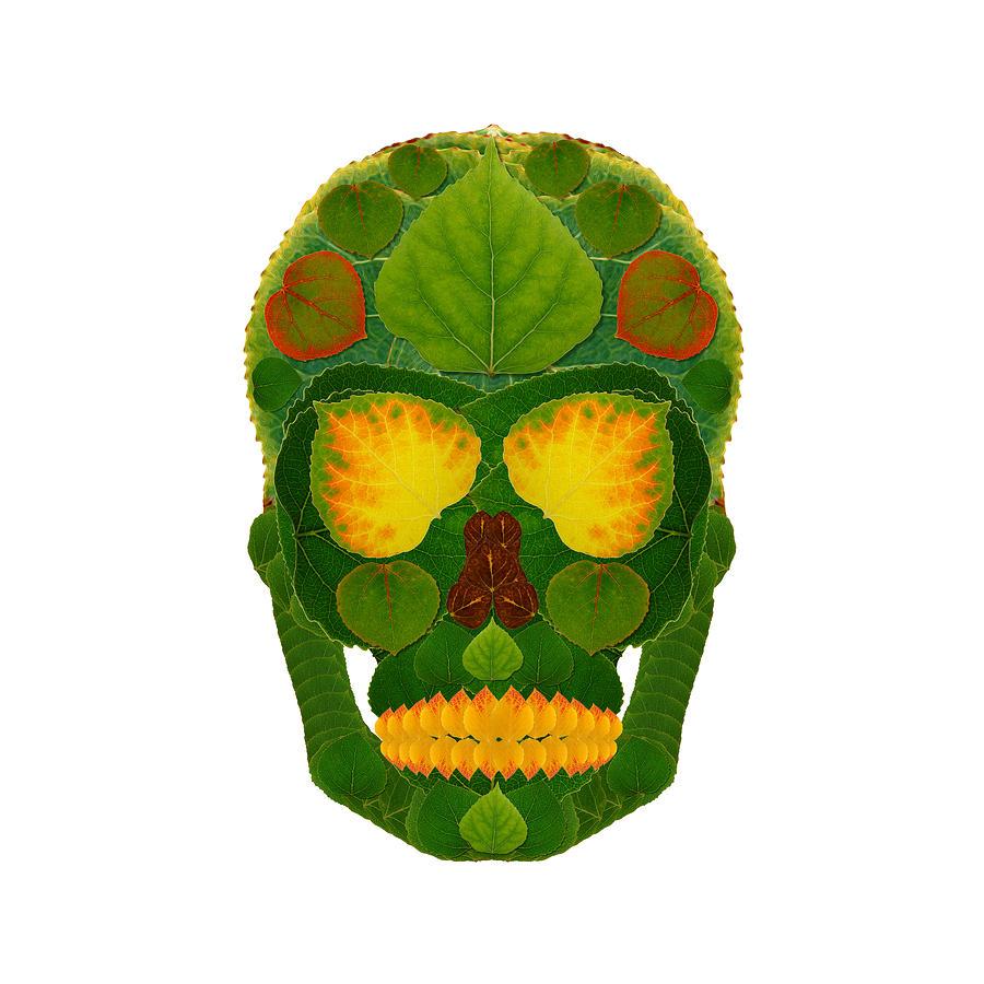 Skull Digital Art - Aspen Leaf Skull 9 by Agustin Goba