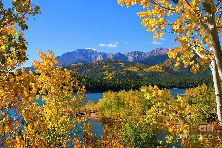 Aspen On Pikes Peak And Crystal Reservoir Photograph
