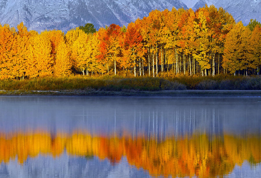 Aspen Reflection by Wesley Aston