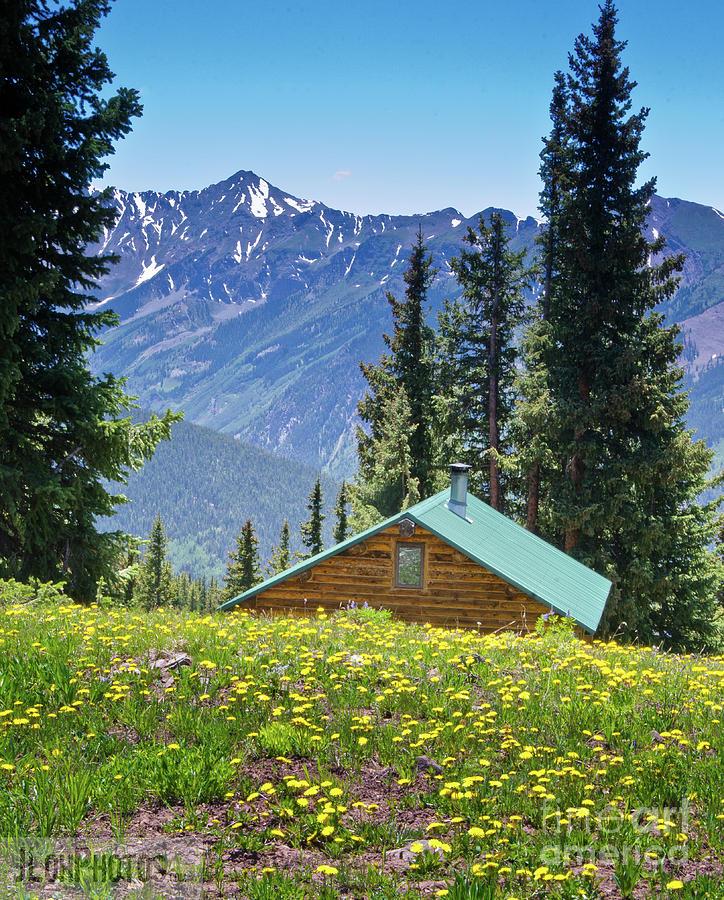 Aspen Spring by Jeff Loh