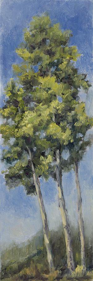 Aspens by Julie Rumsey