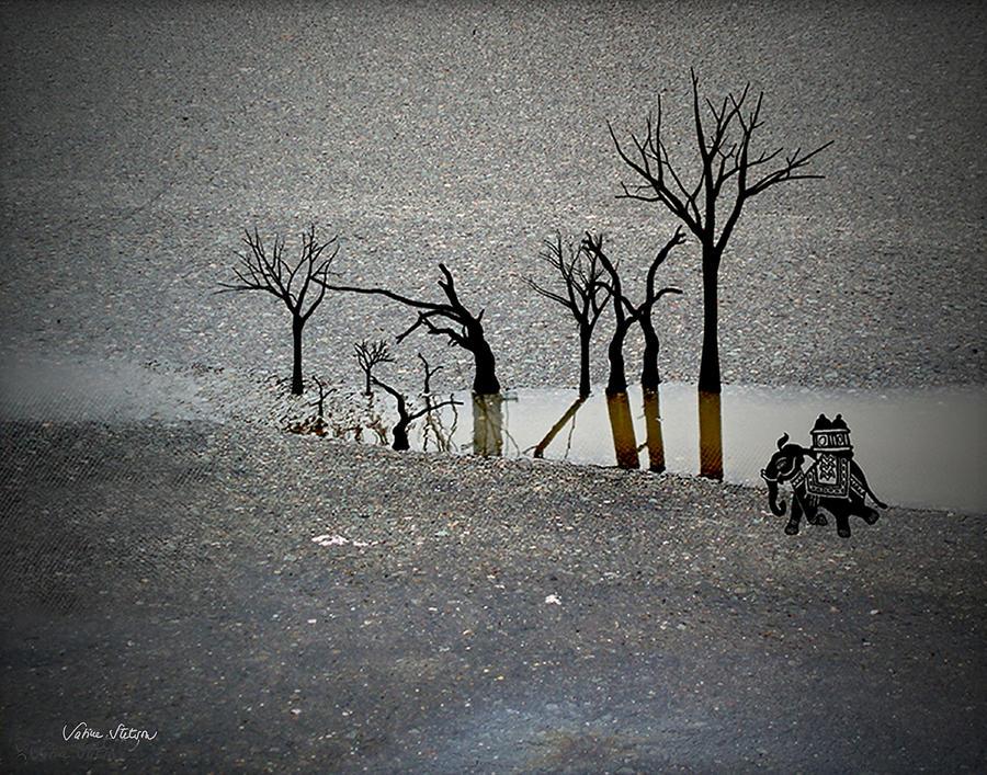 Rain Digital Art - Asphalt Oasis by Sabine Stetson