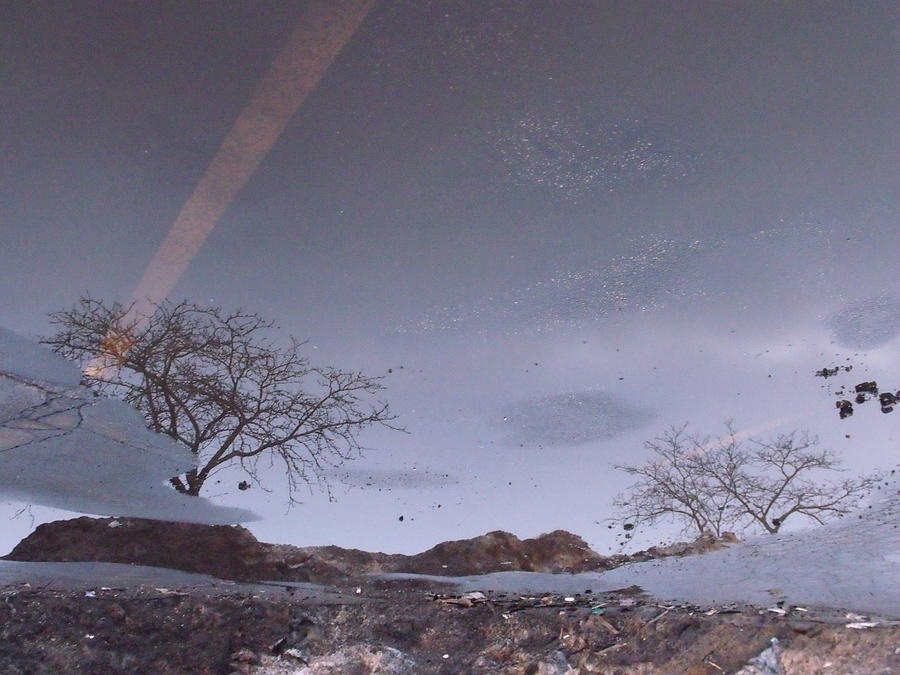 Asphalt Photograph - Asphalt Reflection I by Anna Villarreal Garbis