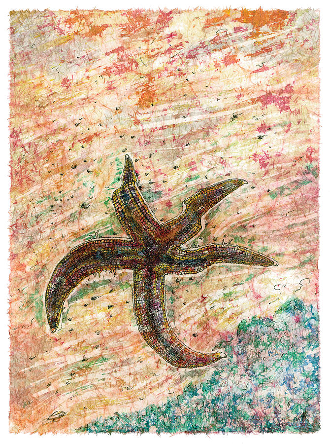 Starfish Painting - Asterozoa by Nick Cantrell