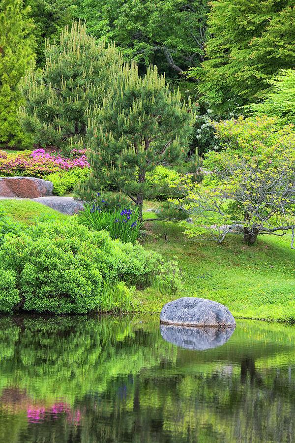 Asticou Gardens #3 by Dennis Kowalewski