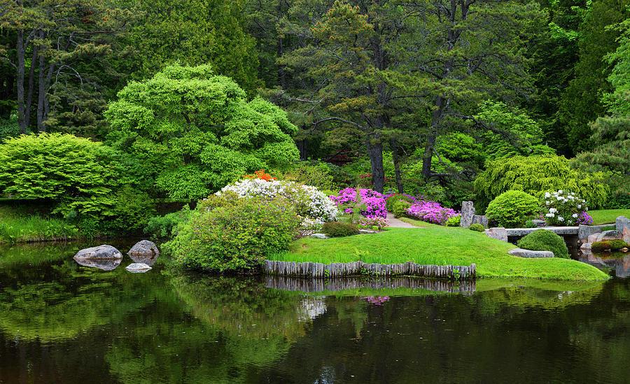 Asticou Gardens #4 by Dennis Kowalewski