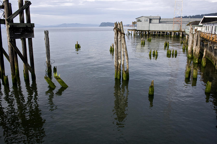 Scenic Photograph - Astoria Waterfront by Lee Santa