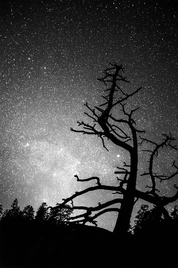 Astrophotography Night Black And White Portrait View Photograph