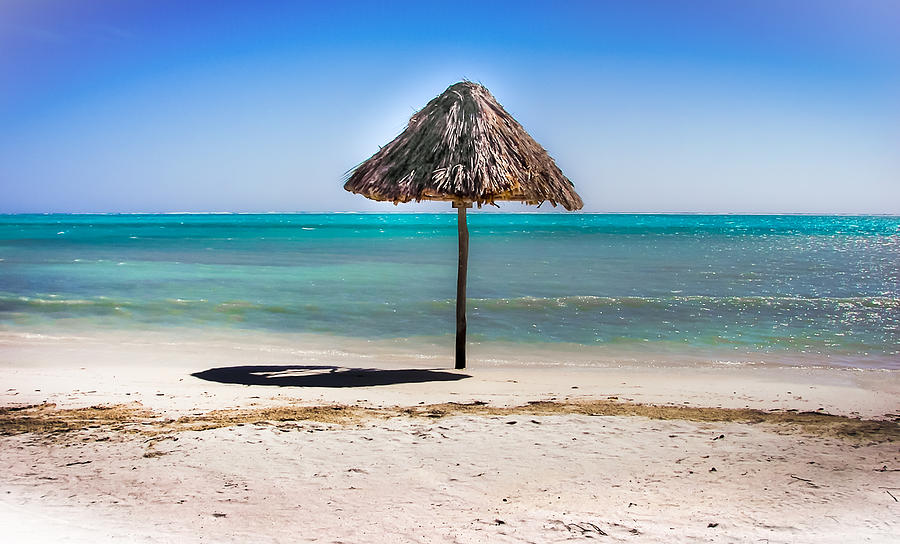 Ambergris Caye Photograph - At Last by Karen Wiles