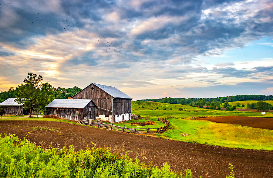 Barn Photograph - At One With The Land by Steve Harrington