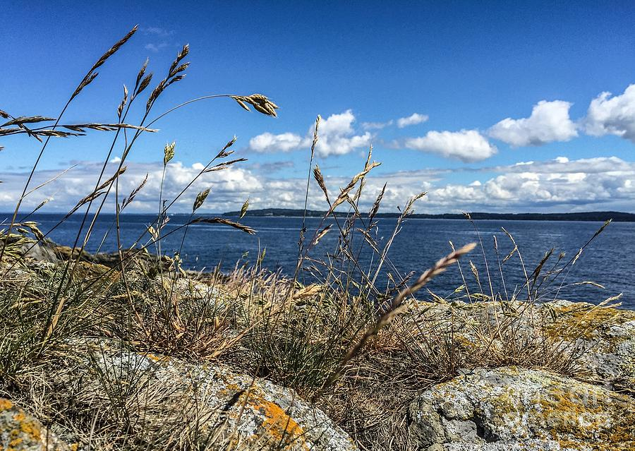 Orcas Island Photograph - At Point Lawrence by William Wyckoff