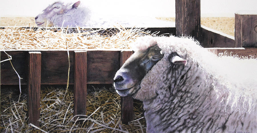 Sheep Painting - At Rest by Denny Bond