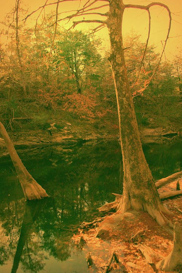 River Photograph - At The Bank by Nina Fosdick
