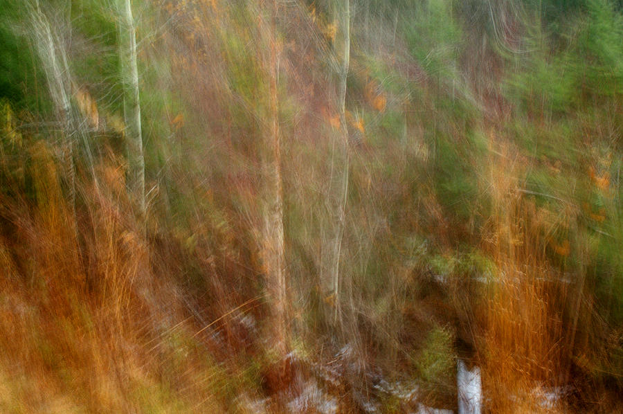 Impressionism Photograph - At The Edge Of Reality by Bill Morgenstern