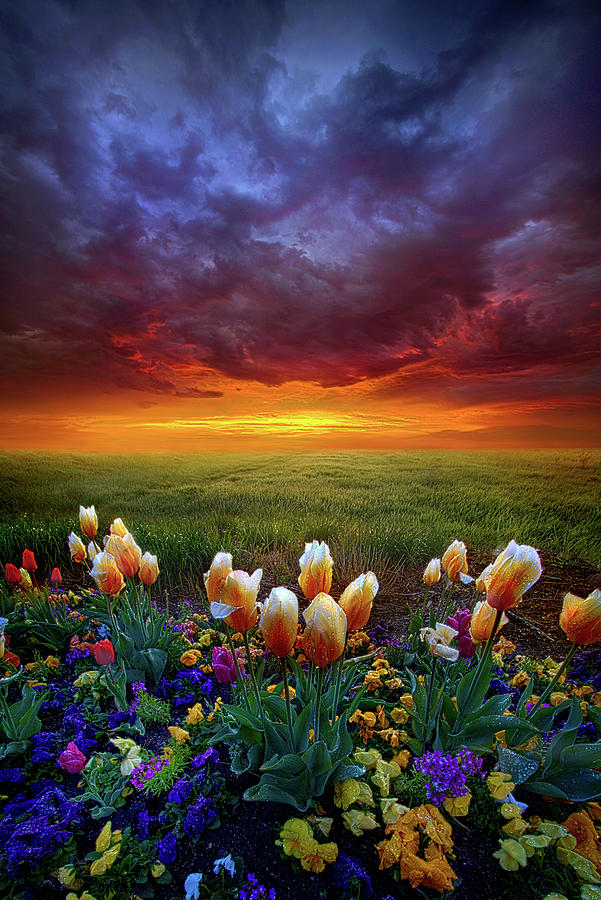 Clouds Photograph - At The End Of Darkness by Phil Koch